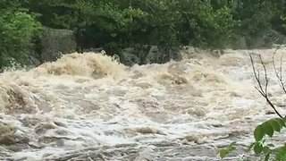 Potomac River Rages Through Great Falls Area After Heavy Rain