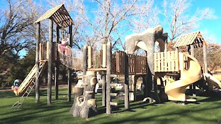 Cool Playgrounds Forest Style Park!