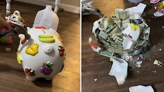 Girl breaks piggy bank after two years, and the result is totally satisfying