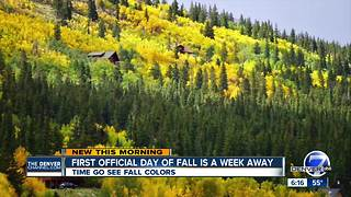 Fall colors arrive in Colorado's mountains - Video