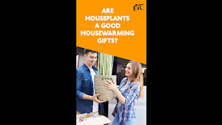 Top 3 Useful Housewarming Gift Items For New Homeowners