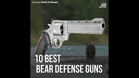 10 Best Bear Defense Guns