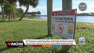 Bacteria levels high at some beaches - Video