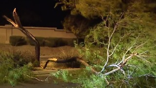 Wind wreaks havoc across Las Vegas valley - Video