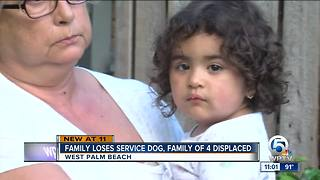 West Palm Beach family loses service dog in fire - Video