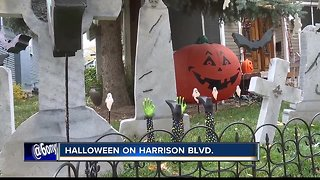 Trick or treaters line streets of Harrison Blvd