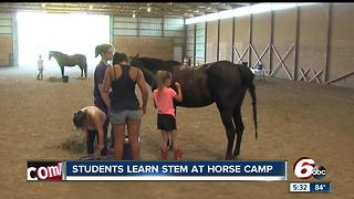 Students learn STEM at horse camp - Video