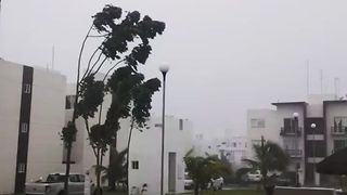 Tropical Storm Franklin Bears Down on Playa del Carmen - Video