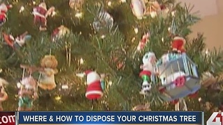 Done with your Christmas tree? Here's where to recycle them in the KC metro - Video