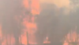 Passenger Films Southwest Sydney Bushfire From Inside Passing Train - Video