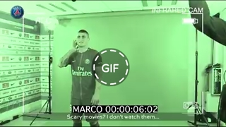 GIFHY.VIDEO - Video