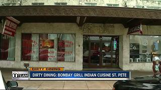 Dirty Dining: Bombay Grill Indian Cuisine shut down for 700+ rodent droppings in kitchen - Video