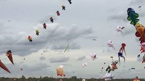 Dozens of Whimsical Kites Drift in the Skies Above Berlin During Drachenfest