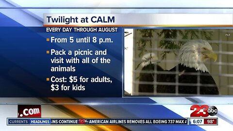 Twilight at CALM every day through August