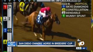 San Diego horse to race in Breeders' Cup - Video