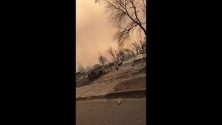 Santa Rosa resident drives around incinerated neighbourhood - Video