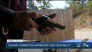House Committee Approves Two Gun Bills