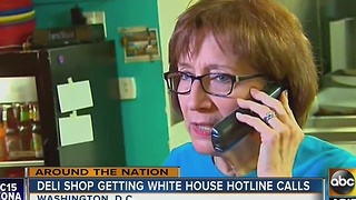 Deli shop getting endless calls meant for White House comment line - Video