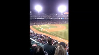 'First-hand' view of foul ball catch at MLB game - Video