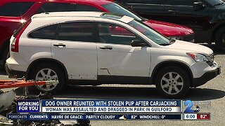 Dog owner reunited with stolen pup after carjacking