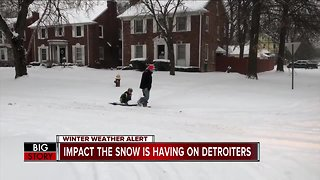 Impact the snow is having on Detroiters
