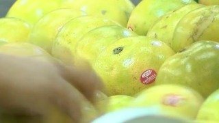 Citrus growers could see benefits to cold weather - Video