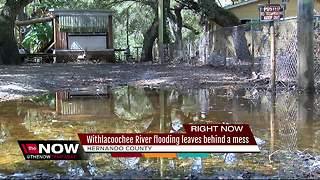 Withlacooche River flooding leaves behind mess