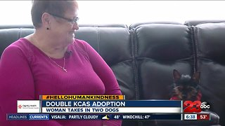 Hello humankindness: Double KCAS adoption