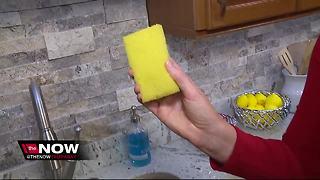 Reasons to swap out that kitchen sponge - Video
