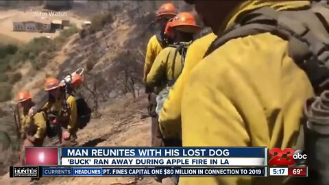 Man reunites with lost dog during Apple Fire