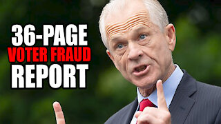 Peter Navarro Released 36-Page Report of Election Fraud
