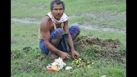40 years ago he started planting trees
