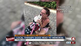 Local Therapy Dogs Go to PArkland - Video