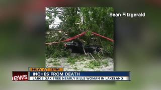 Woman narrowly escapes death after massive oak tree smashed her car - Video
