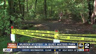Police trying to identify human remains found in Annapolis - Video