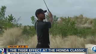 The Tiger effect at the Honda Classic