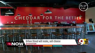 Urban Stead will make, sell cheese - Video