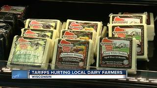 Tariffs hurting local dairy farmers - Video
