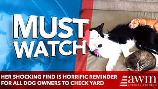 Her Shocking Find Is Horrific Reminder for All Dog Owners to Check Yard - Video