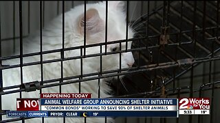 Animal welfare group announcing shelter initiative