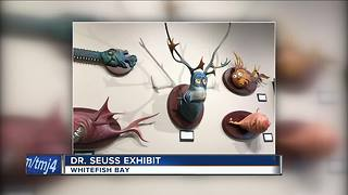 Never before seen Dr. Seuss art on display - Video