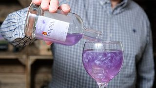 Glitter and tonic! Inside quaint distillery behind purple sparkly gin taking internet by storm - Video