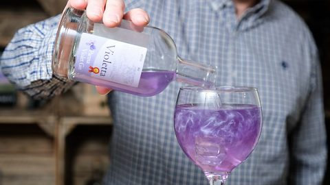 Glitter and tonic! Inside quaint distillery behind purple sparkly gin taking internet by storm