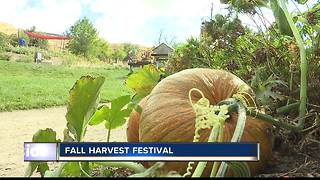 Fall Harvest Festival at the Idaho Botanical Garden - Video