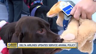 Delta Airlines updates service animal policy