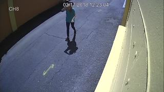 Surveillance Video 1: Suspects sought in fatal pedestrian accident on Hillsborough Avenue - Video