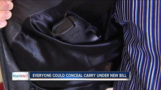 PolitiFact Wisconsin: Everyone could conceal carry claim