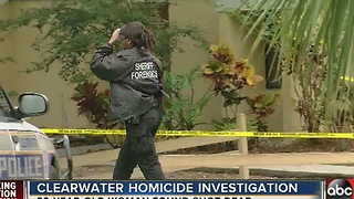 Clearwater police investigating homicide after reports of gunshots - Video