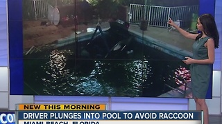 Driver swerves to avoid raccoon, plunges into pool - Video