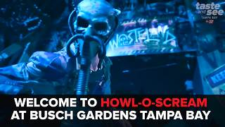 Busch Gardens goes all out for Howl-O-Scream | Taste and See Tampa Bay - Video